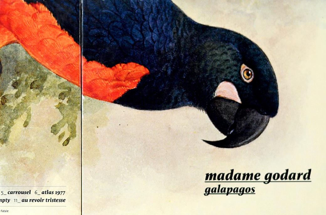 Madame Godard